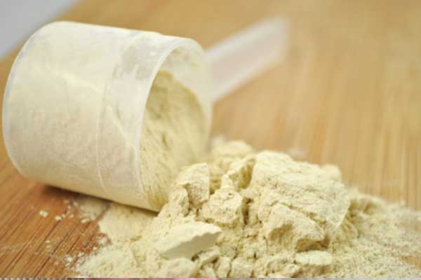 vegan protein powder
